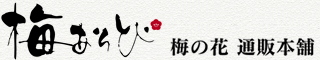 梅の花 通販本舗 梅あそび
